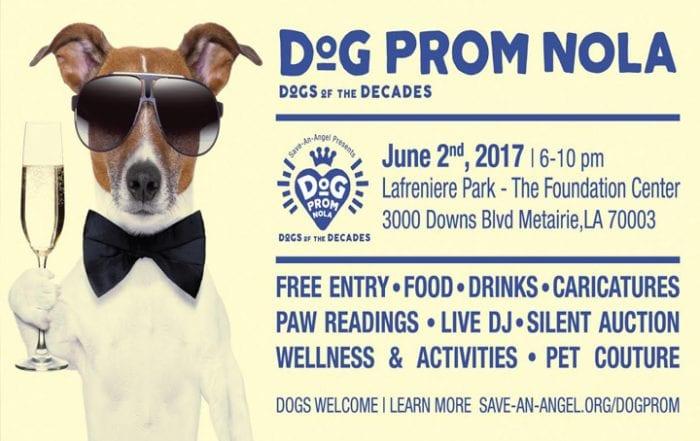 New Orleans Dog Prom NOLA