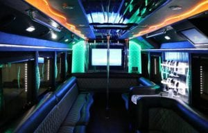 Bachelorette Party – Hire The Party Animal As A Chaperon, Transportation
